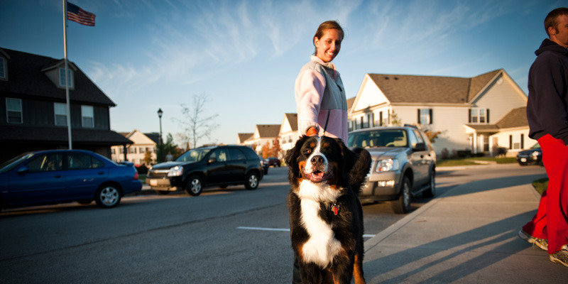 Pet Friendly | Annex at River South Apartments