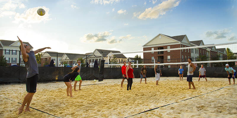 LC Preserve Crossing Apartments | Volleyball